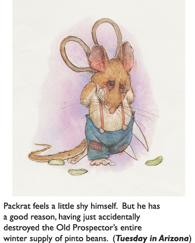 'Shy Packrat'  Original art from children's book Tuesday In Arizona – in which the aforesaid packrat manages to ruin the Old Prospector's life every day of the week—except Tuesday.