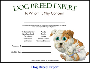 'Dog Breed Expert' Award Certificate for children who learn the dog breeds in the picture book Ten Little Puppies.  Art of bulldog puppy in diapers with spaces for child's and parent's or teacher's names.