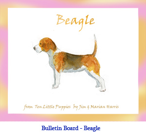 Bulletin board art of a Beagle dog.  Original art by Jim Harris from the counting book, Ten Little Puppies.