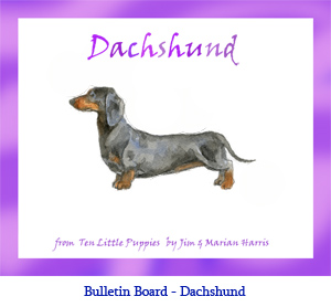 Bulletin board art of a Dachshund dog.  Art from the children's counting book, Ten Little Puppies, illustrated by Jim Harris.