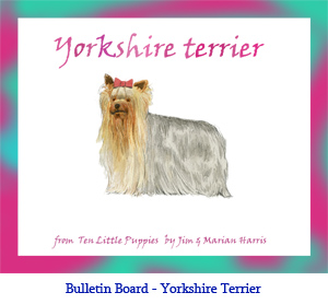 Bulletin board art of a Yorkshire Terrier dog.  Art from the children's counting book, Ten Little Puppies, illustrated by Jim Harris.