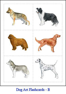 how to choose a dog breed book
