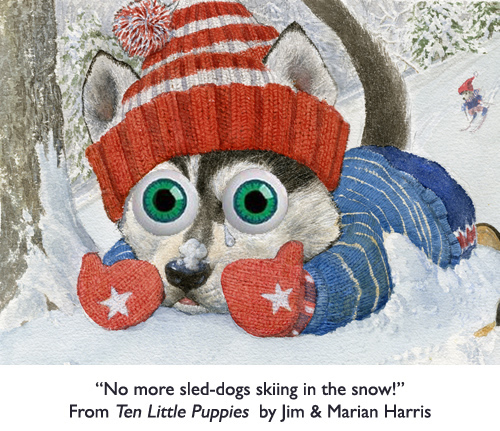 "'No more sled-dogs skiing in the snow!""  Husky puppy from the children's counting book, Ten Little Puppies."